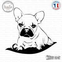 Sticker Bouledogue chiot sticks-em.fr