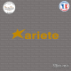 Sticker Ariete Logo Sticks-em.fr Couleurs au choix