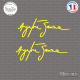 2 Stickers Signature Ayrton Senna Sticks-em.fr Couleurs au choix