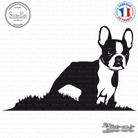 Sticker Boston Terrier sticks-em.fr