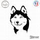 Sticker Tête de Husky